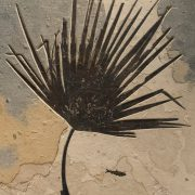 Fossil Mural 02_Q160814002gm 3